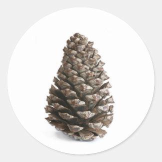 Single pinecone classic round sticker