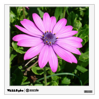 Single Pink African Daisy Against Green Foliage Wall Sticker