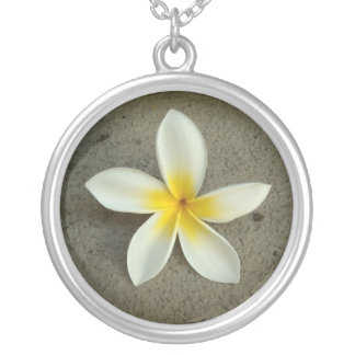Single plumeria hawaii flower necklace