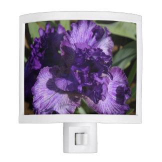 Single Purple Iris Night Light