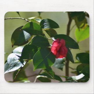 Single Red Flower Mousepad