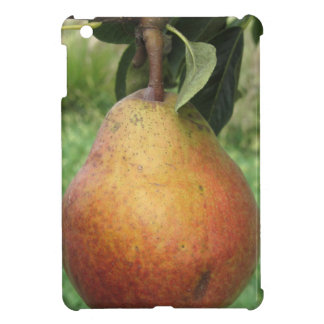 Single red pear hanging on the tree iPad mini cases