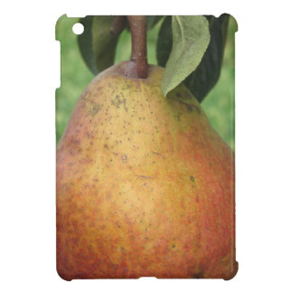 Single red pear hanging on the tree iPad mini cover