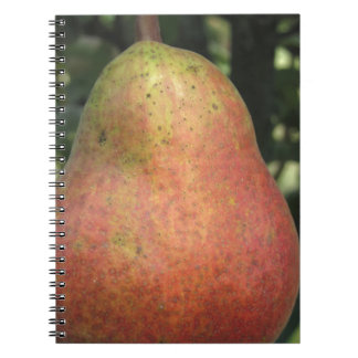 Single red pear hanging on the tree spiral notebook