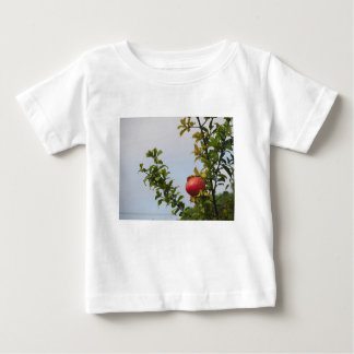 Single red pomegranate fruit on the tree in leaves baby T-Shirt
