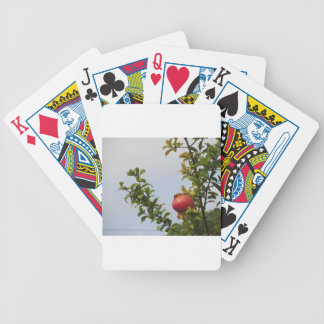 Single red pomegranate fruit on the tree in leaves bicycle playing cards