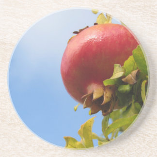 Single red pomegranate fruit on the tree in leaves coaster