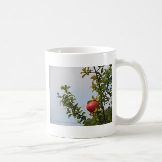 Single red pomegranate fruit on the tree in leaves coffee mug