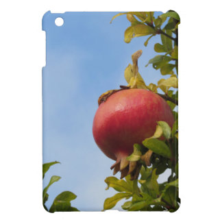 Single red pomegranate fruit on the tree in leaves iPad mini case