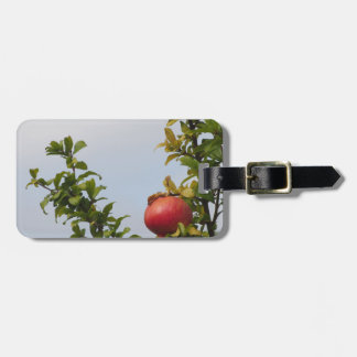 Single red pomegranate fruit on the tree in leaves luggage tag