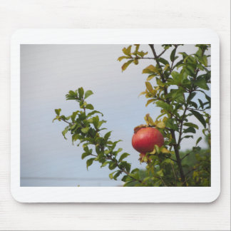 Single red pomegranate fruit on the tree in leaves mouse pad