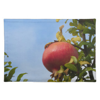 Single red pomegranate fruit on the tree in leaves placemat