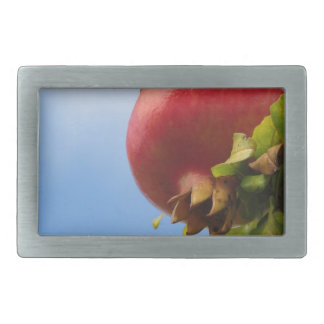 Single red pomegranate fruit on the tree in leaves rectangular belt buckle