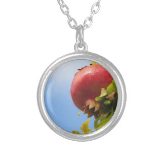Single red pomegranate fruit on the tree in leaves silver plated necklace