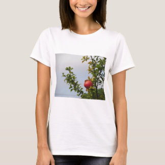 Single red pomegranate fruit on the tree in leaves T-Shirt