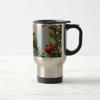 Single red pomegranate fruit on the tree in leaves travel mug