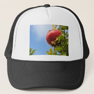 Single red pomegranate fruit on the tree in leaves trucker hat