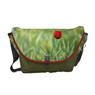 Single Red Poppy Courier Bags