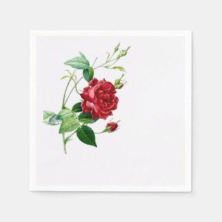 Single Red Redoute Rose on Eggshell Napkins