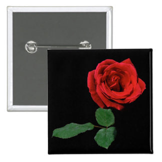Single Red Rose 2 Inch Square Button