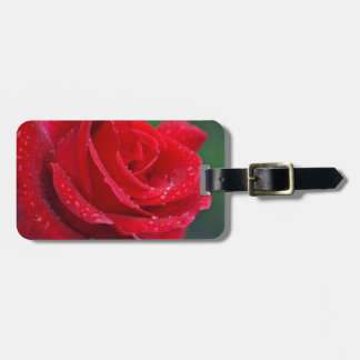Single red rose blossoms luggage tag