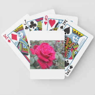 Single red rose flower with water droplets bicycle playing cards