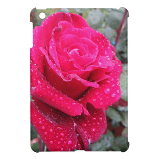 Single red rose flower with water droplets iPad mini case