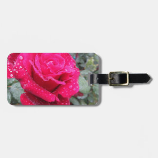 Single red rose flower with water droplets luggage tag