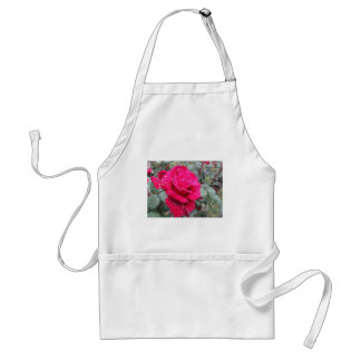 Single red rose flower with water droplets standard apron