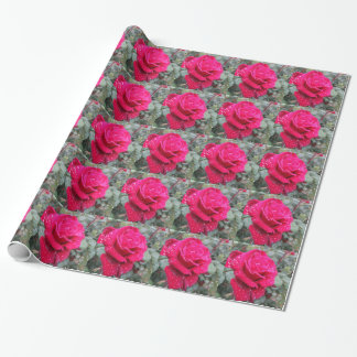 Single red rose flower with water droplets wrapping paper