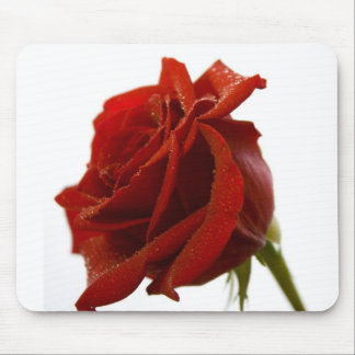 Single Red Rose With Dew Drops Mouse Pad