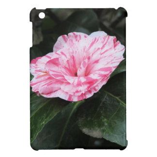 Single red streaked white flower Camellia japonica Case For The iPad Mini