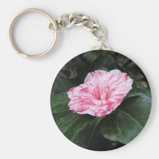 Single red streaked white flower Camellia japonica Keychain