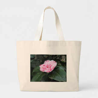 Single red streaked white flower Camellia japonica Large Tote Bag