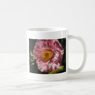 Single red streaked white flower of Camellia Coffee Mug
