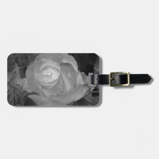 Single rose flower with water droplets in spring luggage tag
