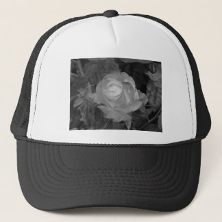 Single rose flower with water droplets in spring trucker hat