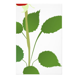 Single Rose Stationery