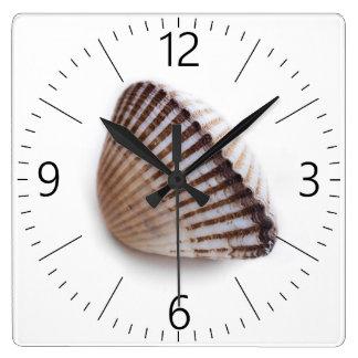 Single seashell square wall clock