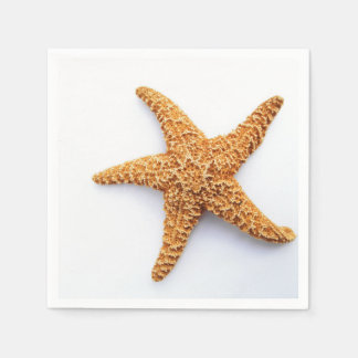 Single Sugar Starfish Paper Napkin