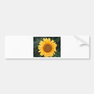 Single Sunflower Bumper Sticker