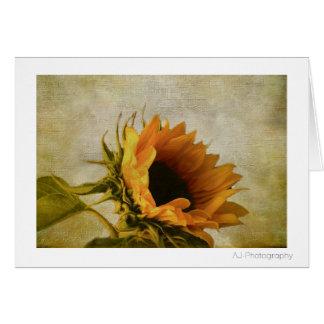 Single Sunflower Card