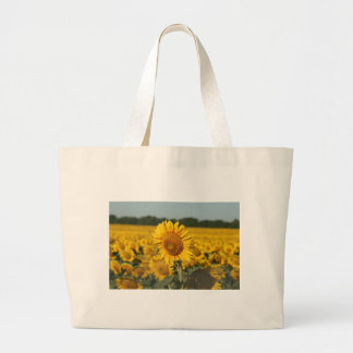 Single Sunflower in a Field of Sunflowers Tote Bags