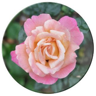 Single Tea Rose Fine Porcelain Plate