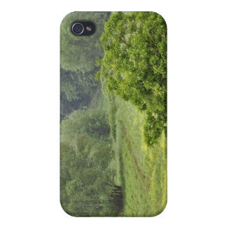 Single tree in agricultural farm field, Tuscany, 2 iPhone 4/4S Cases