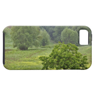 Single tree in agricultural farm field, Tuscany, 2 iPhone 5 Covers
