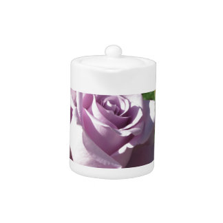 Single violet rose flower with red roses around