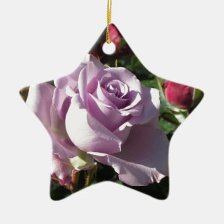 Single violet rose flower with red roses around ceramic ornament