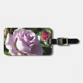 Single violet rose flower with red roses around luggage tag