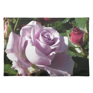 Single violet rose flower with red roses around placemat